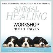 Animal Healing Workshop - Holly Davis