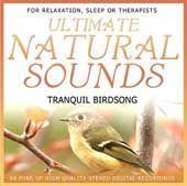 Birdsong by the Stream - Natural Sounds