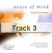 Track 3 - Peace of Mind
