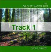 Track 1 - The Secret Woodland