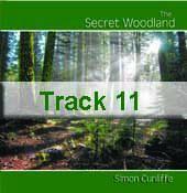 Track 11 - Natural Wonder