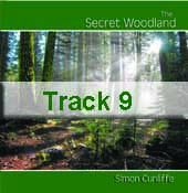 Track 9 - Serenity