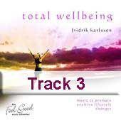 Track 3 - Admiration